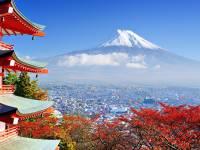 Những Tựa Sách Văn Học Nhật Bản Hay Nhất Hiện Nay