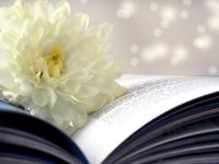 Bạn Sẽ Bất Ngờ Trước Những Bí Kíp Cực Hay Mà Những Cuốn Sách Tham Khảo Môn Hóa 9 Này Mang Lại