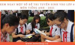 Tổng Hợp Một Số Đề Thi Tuyển Sinh Lớp 6 Môn Tiếng Anh [2021]