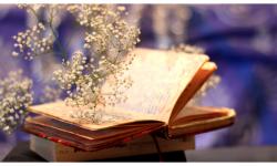 Bí Quyết Trở Thành Một Cô Nàng Vạn Người Mê Chỉ Với Những Cuốn Sách Sau