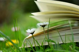 Công Phá Triệt Để Và Gặt Hái Điểm 10 Môn Hóa Học Lớp 10 Nhờ 5 Cuốn Sách Tham Khảo Này