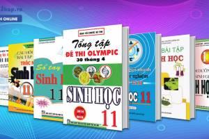 9 Cuốn Sách Tham Khảo Môn Sinh Học 11 Hay Nhất Từ Cơ Bản Đến Nâng Cao