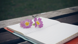 Những Quyển Sách Văn Học Amun Hấp Dẫn Bạn Đến Nỗi Không Thể Rời Mắt