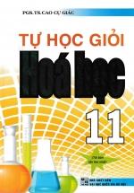 Tự Học Giỏi Hóa Học 11