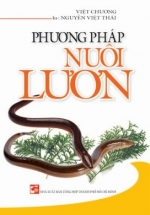 Phương Pháp Nuôi Lươn