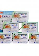 Bộ KatchUp Flashcard Hán Tự N2 (Kanji N2) - High Quality