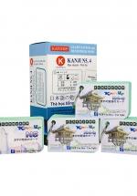 Bộ KatchUp Flashcard Hán Tự Sơ Cấp (Kanji N5,4) - High Quality
