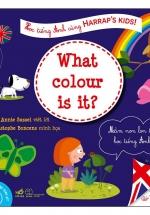 Học Tiếng Anh Cùng Harrap'S Kids: Cái Này Màu Gì? (4+)