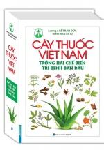 Cây Thuốc Việt Nam Trồng Hái Chế Biến Trị Bệnh Ban Đầu