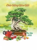 Lịch Lò Xo 7 Tờ 2021 40x60 Cm - Bonsai - HT85