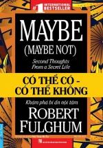 Có Thể Có - Có Thể Không - Maybe (Maybe Not): Second Thoughts From A Secret Life