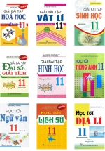 Combo Sách Giải Lớp 11 (Bộ 9 Cuốn)