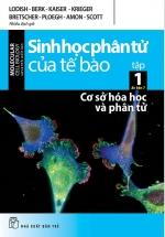 Sinh Học Phân Tử Của Tế Bào - Tập 1: Cơ Sở Hóa Học Và Phân Tử (Ấn Bản 7)